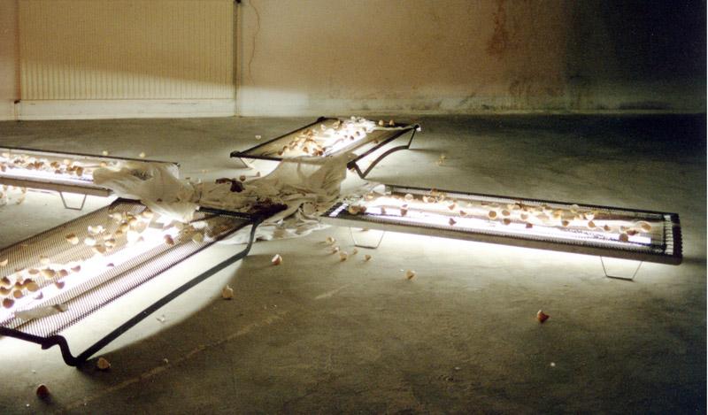 Installation mit Betteinsätzen, Eierschalen, Mullbinden, Neonröhren